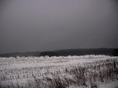 hiverweb.jpg